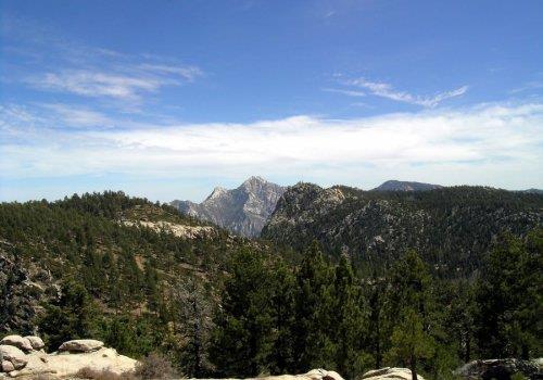 החצר האחורית של קליפורניה - בחה קליפורניה