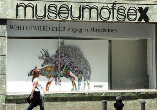 מוזיאון הסקס, ניו יורק