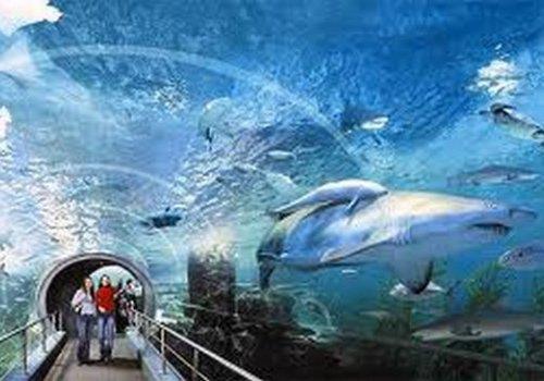 עולם המים של בנגקוק, בנגקוק