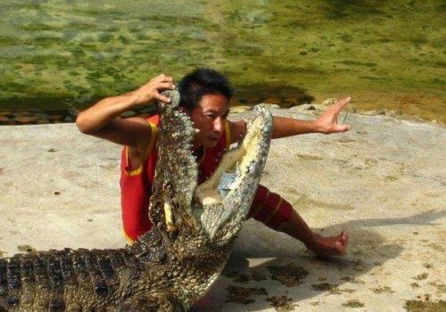 חוות התנינים Samut Prakan, בנגקוק