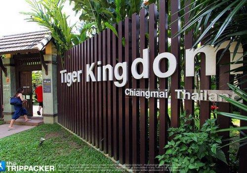 ממלכת הנמרים, צ'אנג מאי