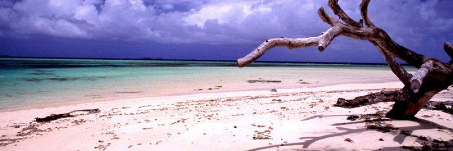 איי מרשל